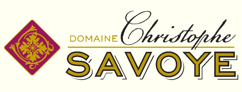 Achat de vin Chiroubles et Morgon - Domaine Christophe Savoye